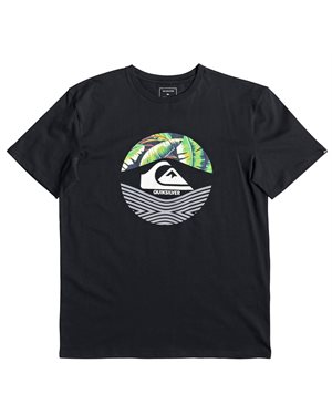 T-SHIRT QUIKSILVER STOMPED ON SS EQYZT05268-KVJ0